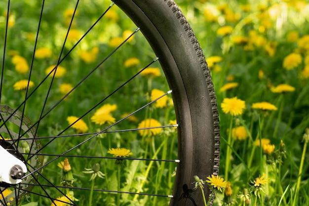 Fahrradrad, das auf der grünen wiese voll des blühenden löwenzahns im sonnigen frühlingstag steht