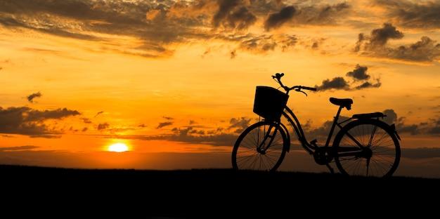 Fahrräder im park