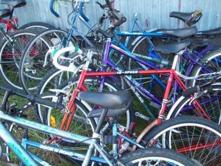 Fahrräder strandgut