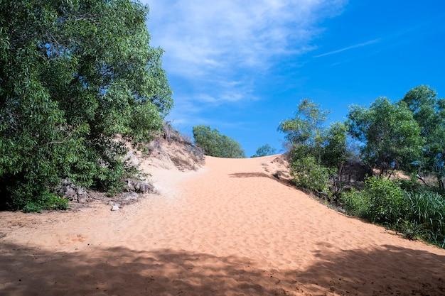 Fairy stream canyon, mui ne, vietnam, südostasien. schöne malerische landschaft mit rotem fluss, sanddünen und dschungel. tropische oasenlandschaft. beliebtes, berühmtes wahrzeichen, touristenziel vietnam