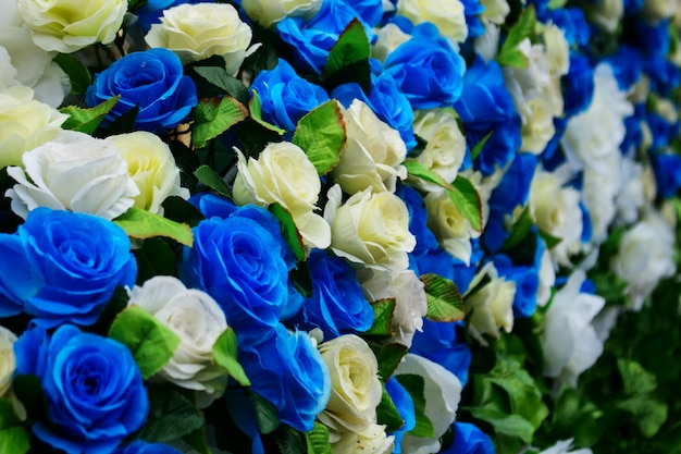 Fake blue und white rose flower.
