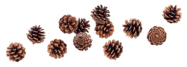 Fallende pinecones getrennt auf weiß mit ausschnittspfad