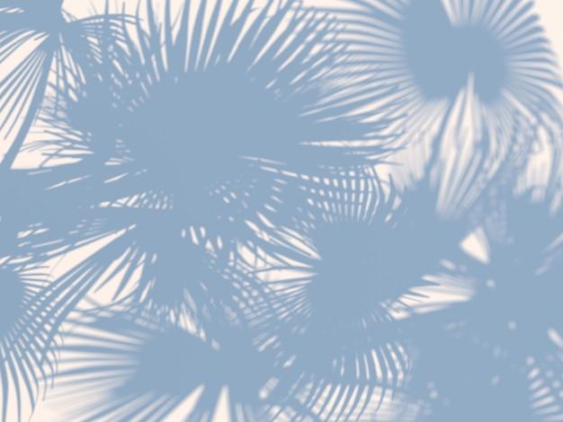 Fallende schatten von einer palme. 3d rendern