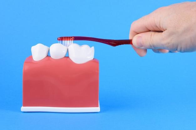 Falscher mund auf blau mit zahnbürste
