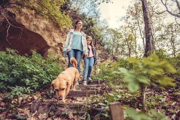 Familie, die in wald mit einem hund geht