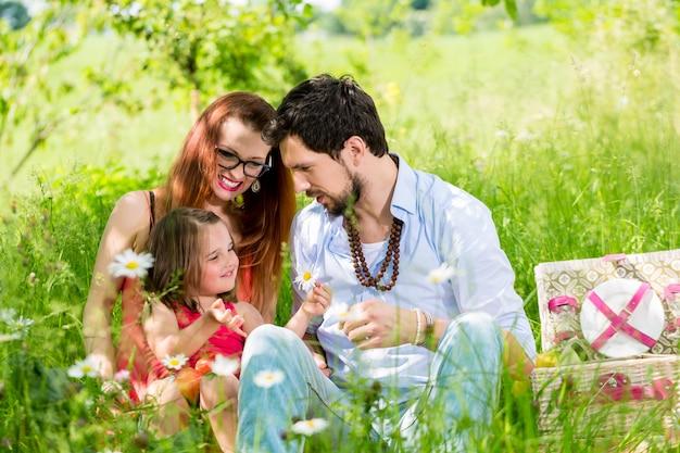Familie, die picknick auf wiese mit gesunder frucht hat