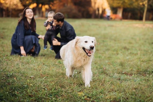 Familie mit einem kind und einem goldenen apportierhund in einem herbstpark