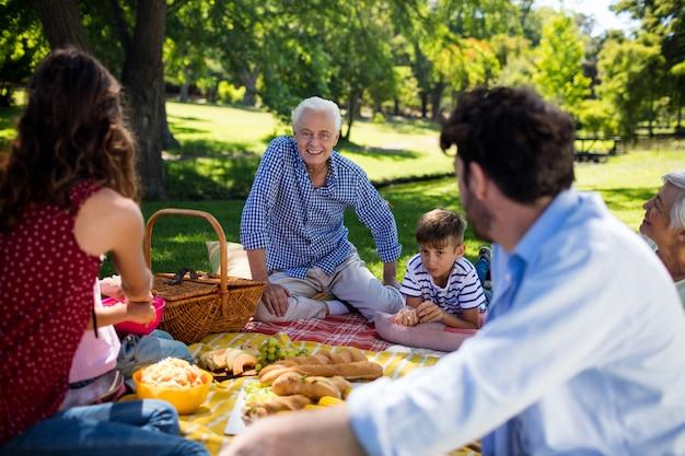 Familie mit mehreren generationen, die das picknick im park genießt
