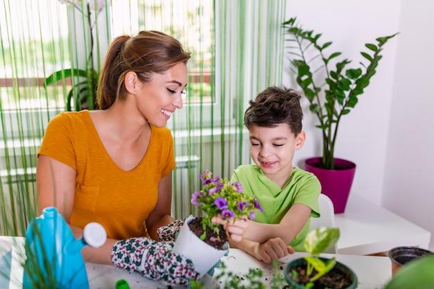 Familie mutter und sohn wachsen blumen, verpflanzen setzlinge in die gärtner.