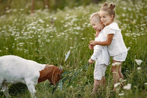 Familie verbringt zeit im urlaub im dorf. jungen und mädchen spielen in der natur.