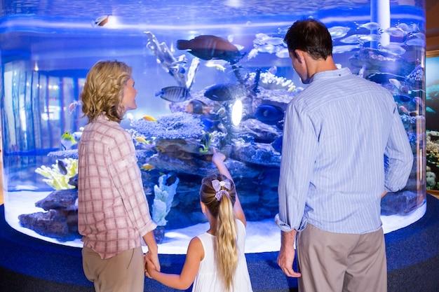 Familly, der aquarium betrachtet