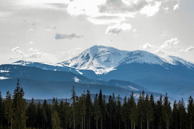 Fantastische ansicht des berges petros in der karpatengebirgsstrecke am hellen sonnigen frühlingstag.