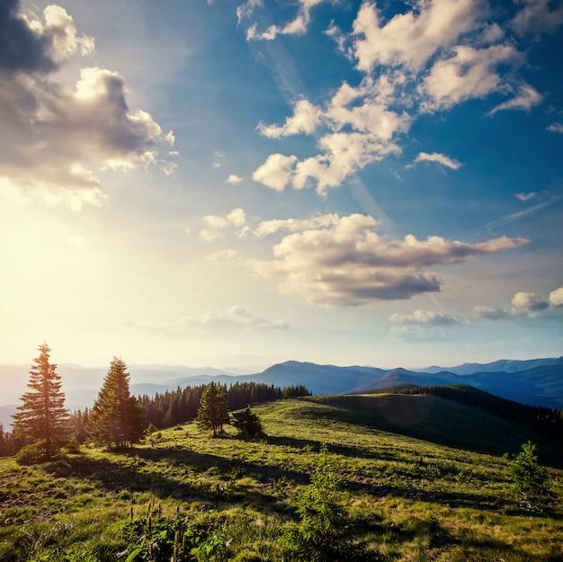 Fantastischer nebeliger tag und helle hügel durch sonnenlicht ukraine, europa