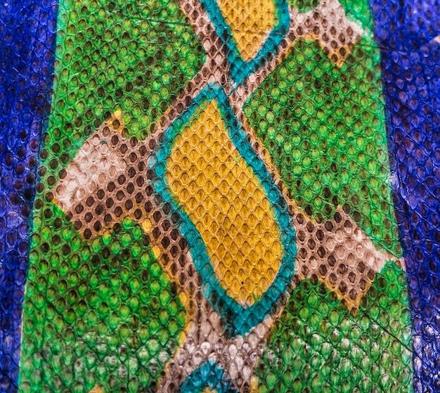 Farbiges schlangenhaut-texturdesign