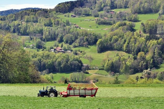 Farm ttractor sammelt gemähtes gras auf dem feld