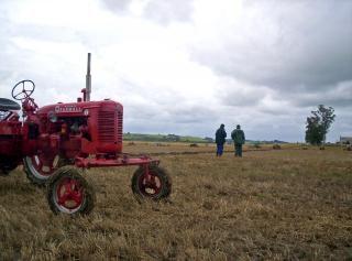 Farmall traktor