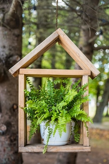 Farnpflanze in einem weißen blumentopf auf einem hölzernen regal in der form eines hauses