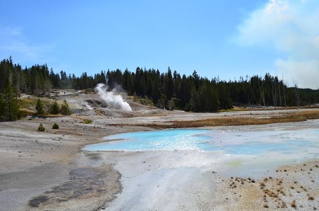 Faszinierende aussicht auf das norris geyser basin im yellowstone, wyoming
