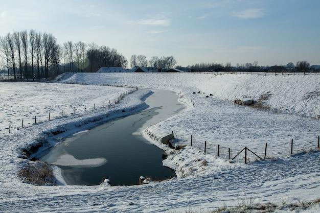 Faszinierende winterlandschaft bedeckt mit flauschigem schnee in den niederlanden