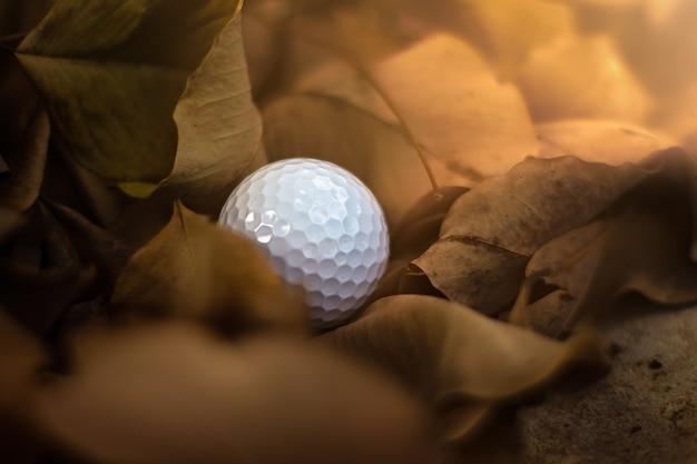 Fehlender, verlorener golfball in rauhem oder gefährlichem fairway mit fallenden blättern