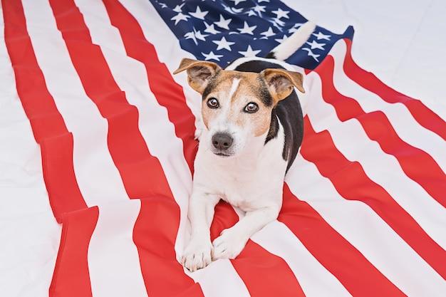 Feier-konzept der amerikanischen flagge tages
