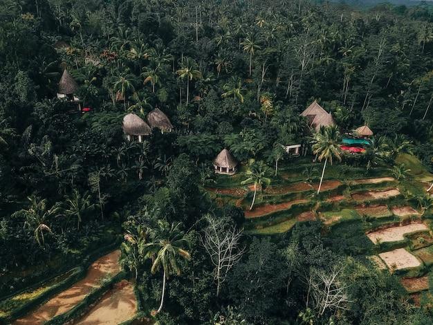 Feiertagswochenende, das im luxus mit tropischem dschungellandhaus bali, indonesien sich entspannt