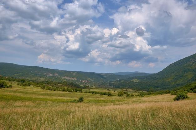 Feld bedeckt mit gras und bäumen, umgeben von hügeln bedeckt mit wäldern unter dem bewölkten himmel