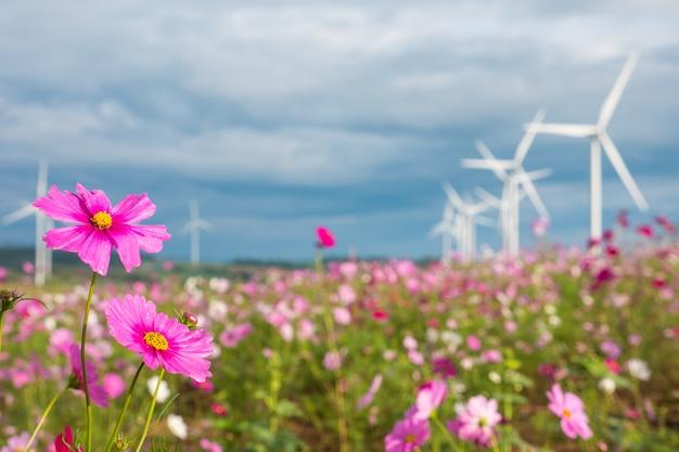 Feld des kosmos blüht mit windkraftanlagen und wolkenhimmelhintergrund.
