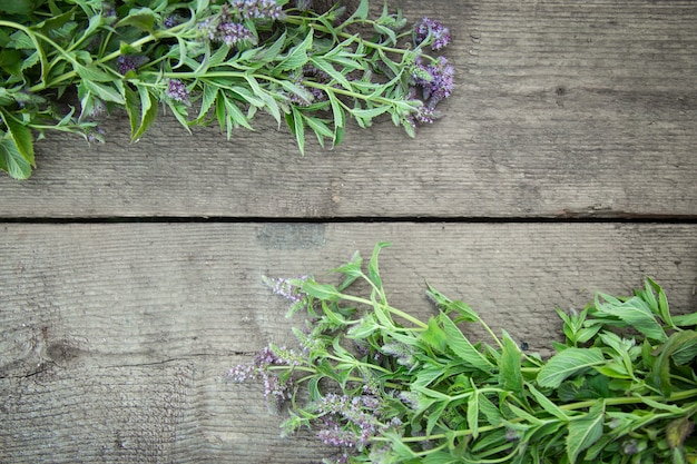 Feld kräuter, die pfefferminz auf einem hölzernen hintergrund blühen. heilkräuter. vintage ländlichen landhausstil. flach liegen.