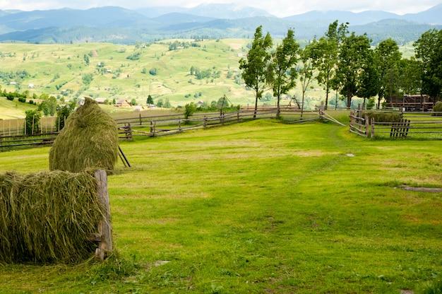 Feld mit heuschober auf bergen