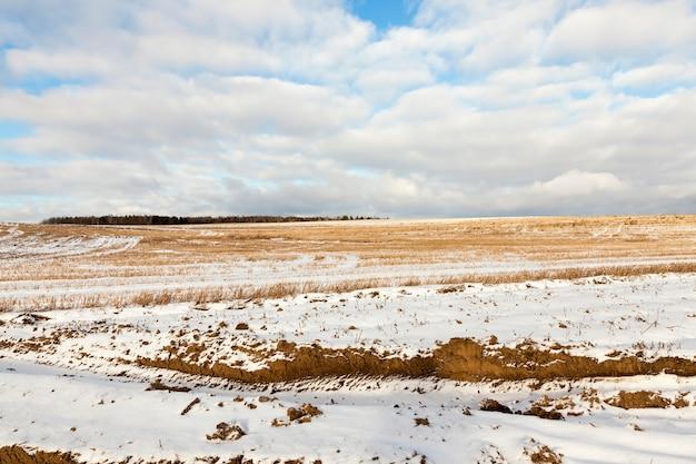 Feld mit schnee in der wintersaison bedeckt, mit blauem himmel