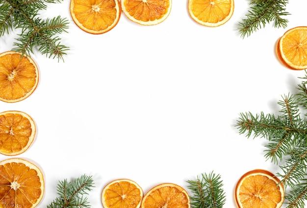 Feld von grünen tannenzweigen und von getrockneten orange scheiben lokalisiert auf weißem hintergrund. draufsicht, flache lage, kopienraum.