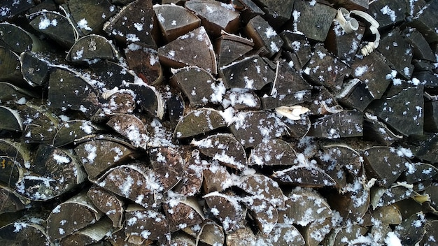 Feldbrennholz im schnee