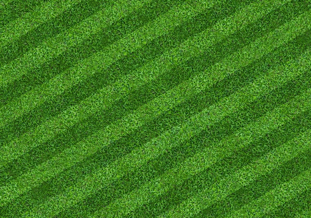 Feldhintergrund des grünen grases für fußball- und fußballsport. grüner rasenbeschaffenheitshintergrund. nahansicht.