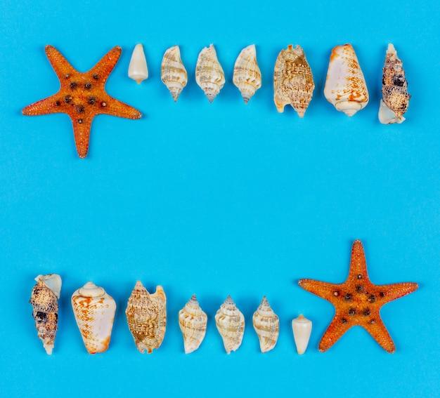 Feldsatz muscheln und starfish auf draufsicht des blauen hintergrundes, ebenenlage mit kopienraum
