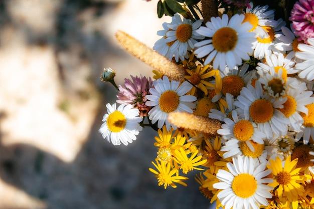 Feldstrauß von gänseblümchen, klee, kleinen gelben blumen und verschiedenen gräsern auf einem schwarzen hintergrund