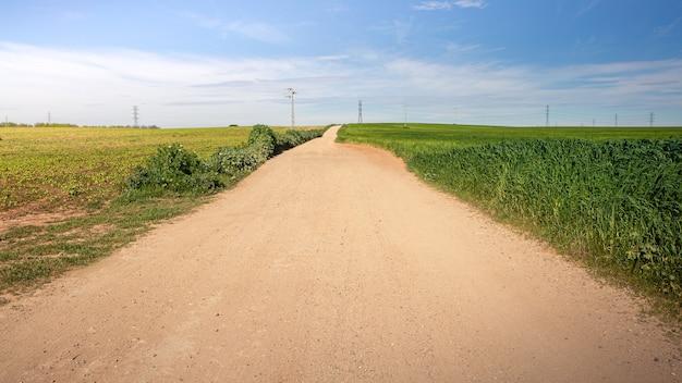 Feldweg und wanderweg zwischen weizenfeld und landschaft in spanien
