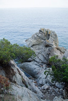 Felsen an der küste von lloret de mar. uferpromenade von lloret de mar costa brava spanien.