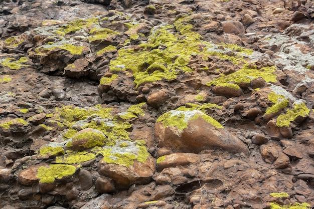 Felsen aus kleinen glatten steinen, bedeckt mit grünem moos und flechten. horizontales bild.
