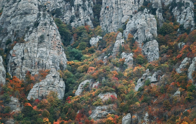 Felsen des berges demerdji