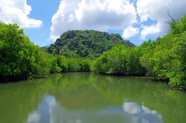 Felsen und meer in krabi, thailand