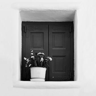 Fenster mit blume im blumentopf. griechenland. schwarz-weiß-fotografie