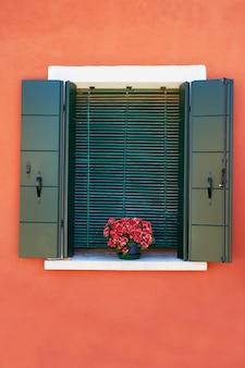 Fenster mit grünen fensterläden und roten blumen im topf. italien, venedig, burano