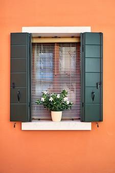 Fenster mit grünen fensterläden und weißen blumen im topf.