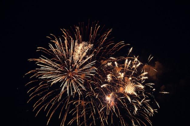 Festliches feuerwerk am dunklen nachthimmel.