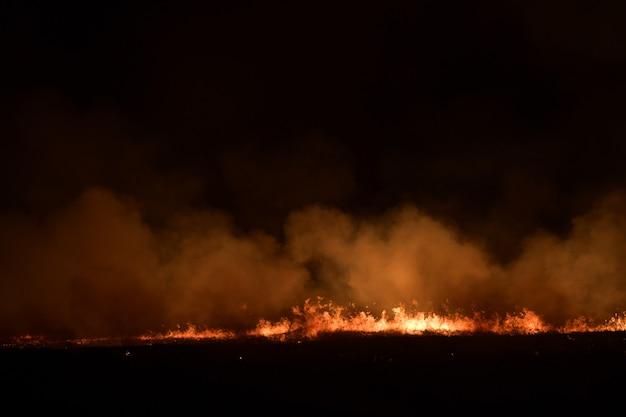 Feuer auf dem feld in der nacht.