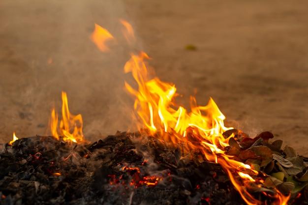 Feuer der gefallenen blätter im herbst