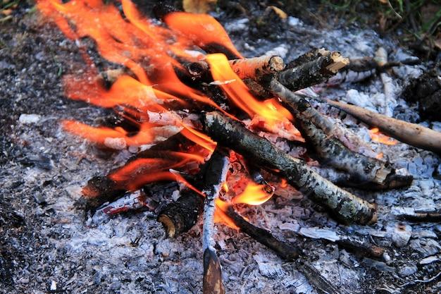 Feuer im herbstwald.