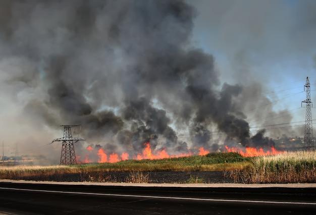 Feuer in schilfdickichten entlang der umgehungsstraße in der nähe von odessa, ukraine