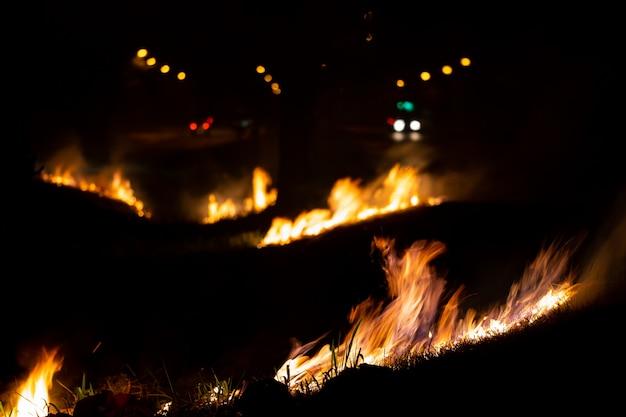 Feuer über der wilden seite der straße, die flamme des brennens in der nacht